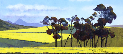 Canola Fields - Waboomkloof - Caledon District | 2020 | Oil on Canvas | 40 x 79 cm