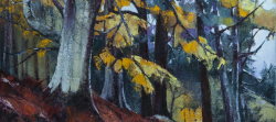 Nature's Stained Glass Window - Autumn Trees - Scotland I | 2013 | Oil on Canvas | 64 x 46 cm