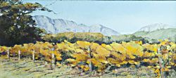 Franschhoek Valley - Autumn Vines | 2013 | Oil on Canvas | 46 X 64 cm