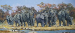 Elephants at the Waterhole - Kruger Park | 2014 | Oil on Canvas | 40 X 80 cm
